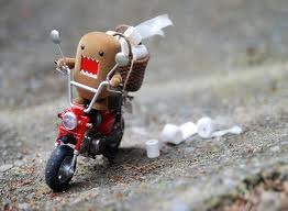 Cycling to the loo Domo.