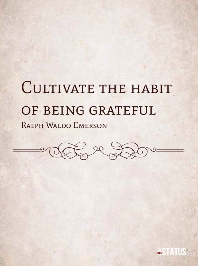 Cultivate the habit of being grateful. ~ Ralph Waldo Emerson