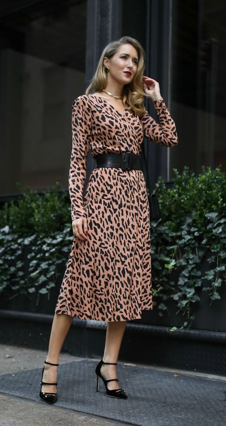 d868c9519c78 Dinner Party Outfit // Long sleeve leopard print wrap dress, black  statement waist belt, gold choker {DVF, Jimmy Choo, fall fashion, what to  wear to a ...