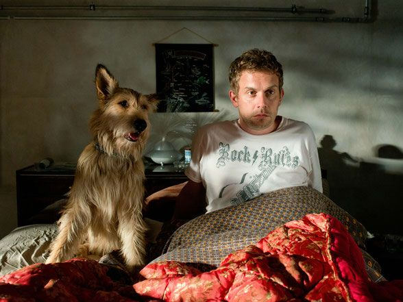 Bekanntheit Als Film Hund Berger Picard Hundin Lucy Constantin Film Filme Picard Hund