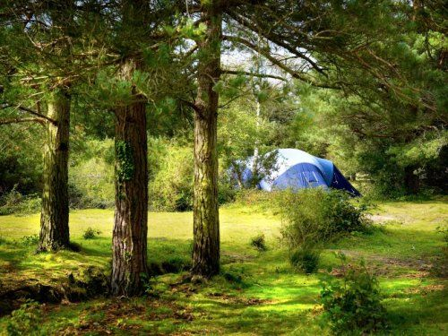 Last weekend I found this great place for camping in the new forest but with plenty of open space which means portable satellite systems will work a treat! http://www.sdsdigital.co.uk/Free-Standing-Satellite-Kits/