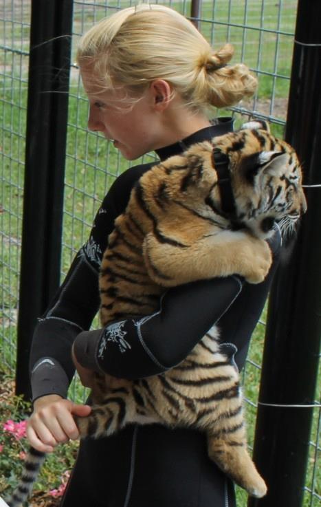 educational talk with tiger cub