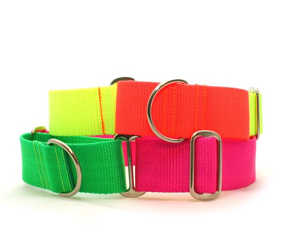 "1.5"" dog collar The Cullen wide buckle or martingale collar"