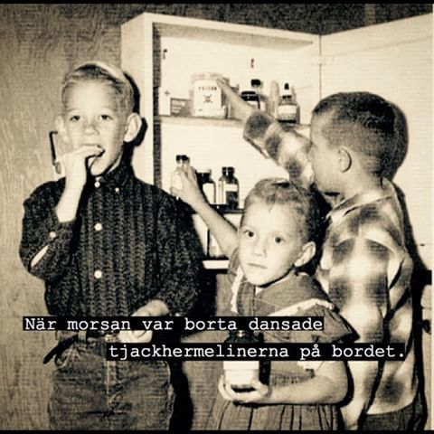 #hermelin #skåp #medicin #droger #tjack #morsan #dansa #dansade #ordspråk #humor #ironi #poesi #skoj #löjligt #fånigt #kul #text #foto