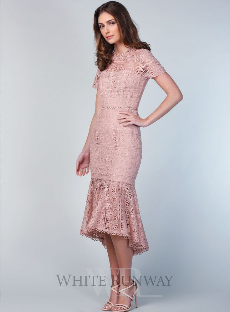 Arabella Lace Dress. A stunning midi length dress by Love Honor. A high neck style featuring short sleeves and a sheer trumpet hemline.