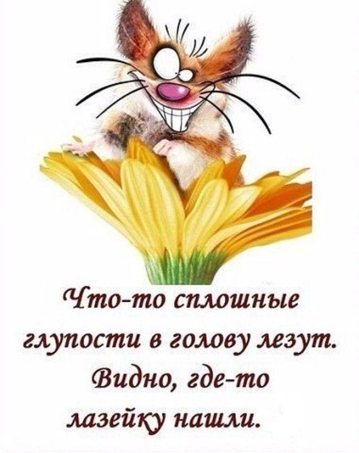 Галина Богданова