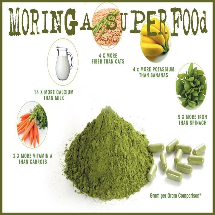 how to make tea using moringa powder