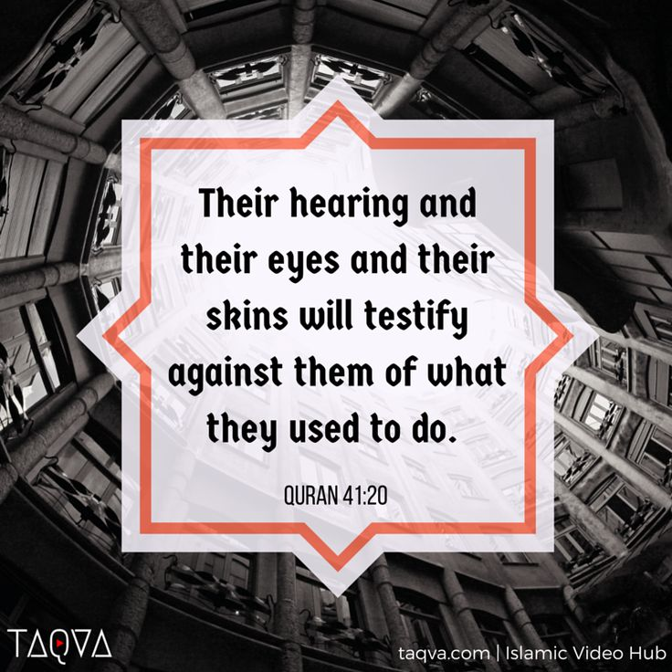 """""""their hearing and their eyes and their skins will testify against them of what…"""