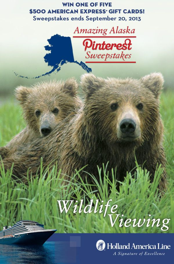 If Wildlife Viewing is your favorite Alaska shore excursion, enter the @Holland America Line Amazing Alaska Pinterest #Sweepstakes for your chance to #win one of five 500.00 American Express gift cards. Enter now: https://www.facebook.com/HALCruises/app_363845683737502 #Alaska