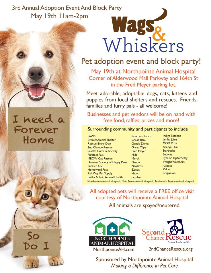 Join Petplan pet insurance at the 3rd Annual Wags and Whiskers Adoption Event and Block Party on May 19th at Northpointe Animal Hospital in Lynnwood, WA! Get there early to grab a free copy of fetch! magazine and our annual calendar!