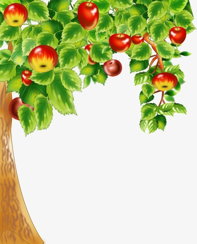 Painted Apple Apple Fruit Tree Bumper Png Transparent