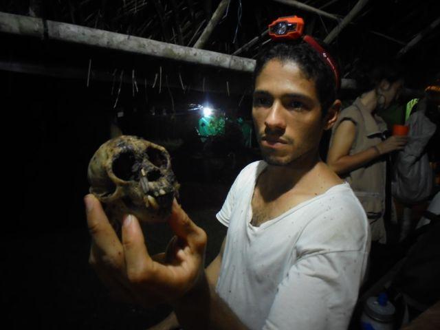 IAP, caracterización biológica. Cráneo de mico encontrado.