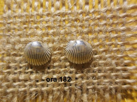 Argento Seashell earrings – Morgana