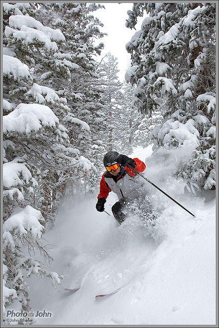 Down the mountain, through the trees, on ski's.