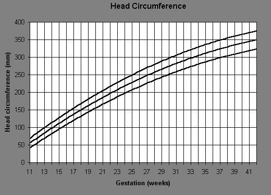 Fetal Growth Chart Head Circumference Traffic Club