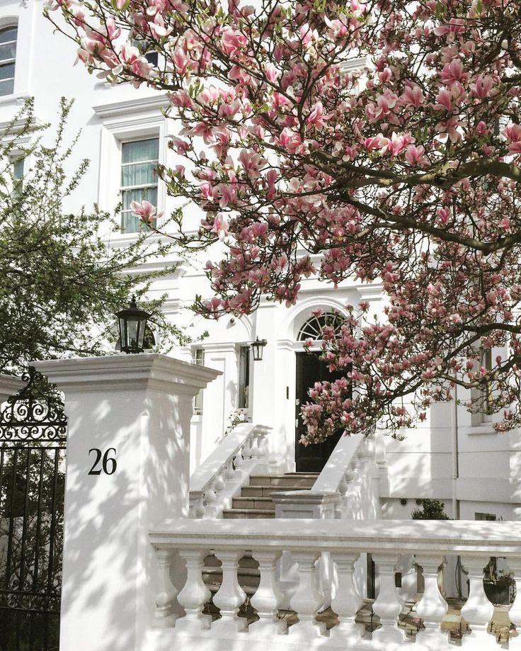 Royal Borough of Kensington and Chelsea. London.-