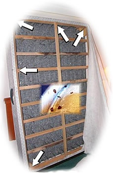 Pest Control Atlanta   Skyline Pest Solutions. Bed BugsAtlanta ...