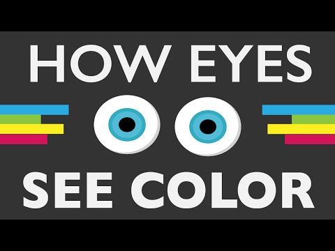 How Do Your Eyes See Color? When you look at a painting are you actually seeing the real color? To answer that, let's take a look at the electromagnetic spectrum. By: Life Noggin.