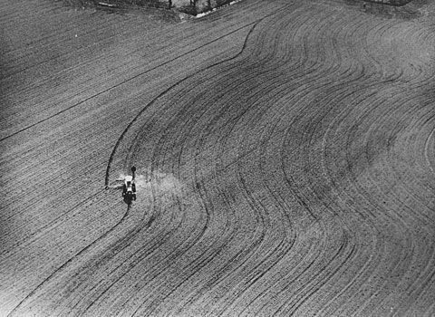 Directed Seeding (1969) / photo by Dennis Oppenheim
