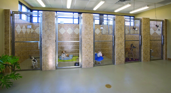 commercial kennel | Canine rolled rubber flooring for dog kennels and dog daycare ...