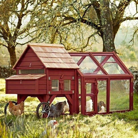 25 best ideas about mobile chicken coop on pinterest for Portable hen house