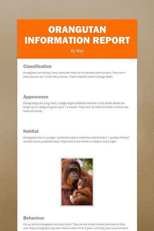 Orangutan Information Report by Max