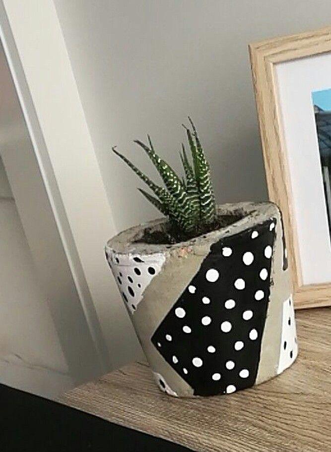 Cute Concrete pot and  succulent   🌵🌵⚪⚫⚪