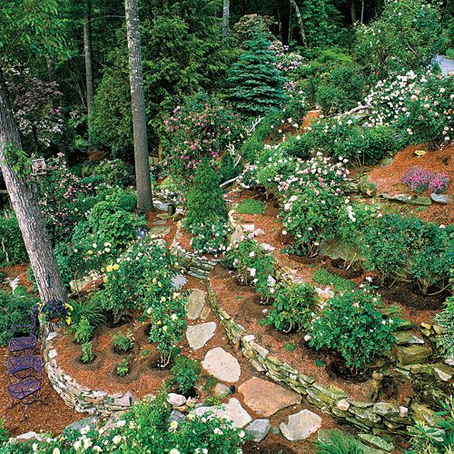 17 best ideas about steep backyard on pinterest sloping for Garden designs for slopes