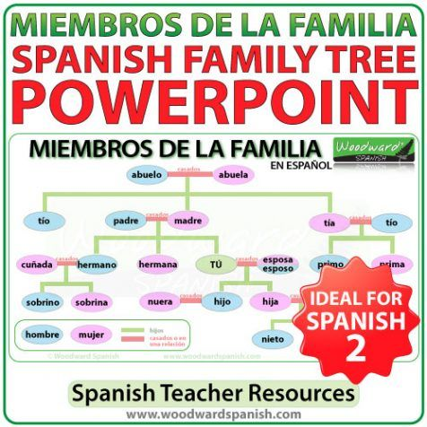 Best 25+ Spanish family tree ideas on Pinterest Spanish - family tree example