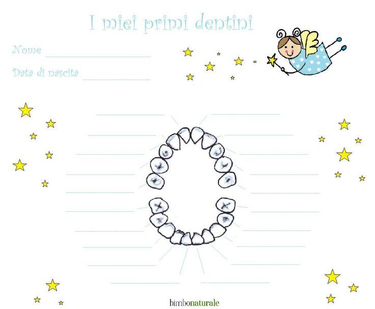 13 best scatola per dentini images on pinterest