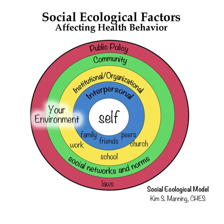 the ecological model Ecological theory was built in a nested structure that resembles russian dolls in the structure of this theory, there are five layers that are arranged from the closest to the farthest these five layers include microsystem, exosystem, mesosystem, macrosystem, and chronosystem.