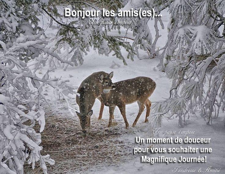 Favori Les 30 meilleures images du tableau bonjour sur Pinterest  FR65