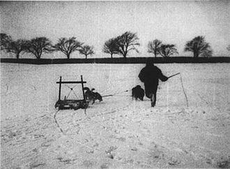 Kørsel med Grønlandske Hunde - Directed by Peter Elfelt; the first Danish movie sequence ever filmed.
