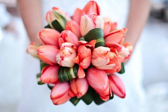 Friday Florals – Parrot Tulips » Alexan Events | Denver Wedding Planners, Colorado Wedding and Event Planning