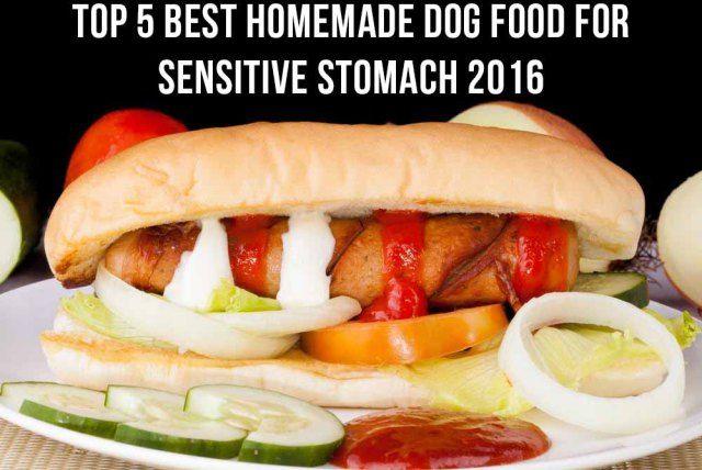 Top 5 Best Homemade Dog Food For Sensitive Stomach 2016 :http://patmypet.net/top-5-best-homemade-dog-food-for-sensitive-stomach-2016/