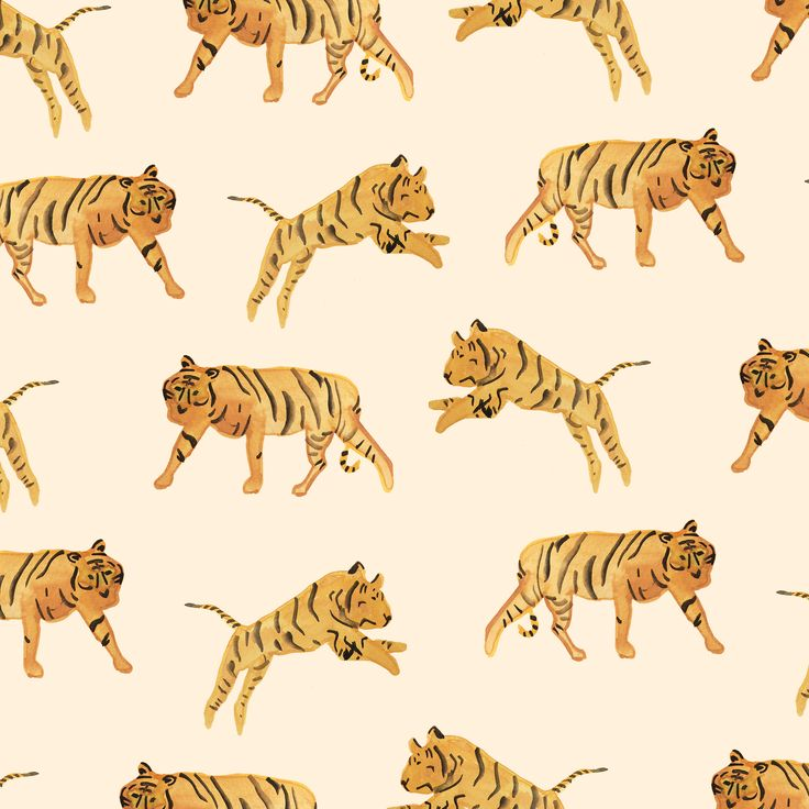 Tiger Pattern by Sara Combs                                                                                                                                                                                 More