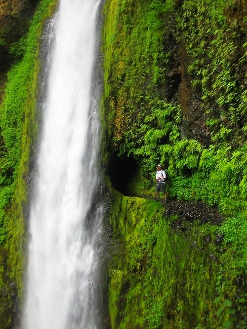 Tunnel Falls, OR.   WOW!  Brave!