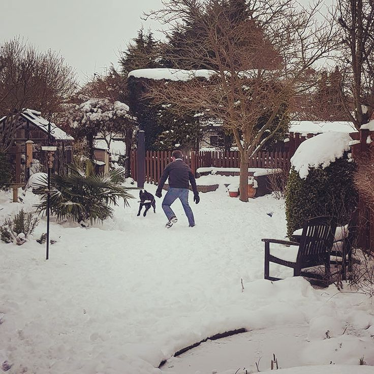 Having a little fun with our Cassy in the snow. Trying to wear her out but I must admit to feeling a tired - its cold out there!  Not #gardening #weather today! #garden #gardening #flower #flowers #havefun #stamford #stamforduk #uk #landscaping #gardendesign #beastfromtheeast