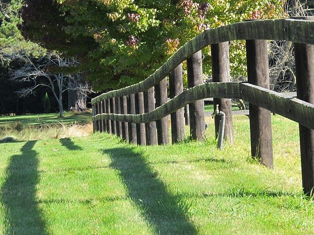 10 Best Fence Ideas Images On Pinterest Fence Ideas