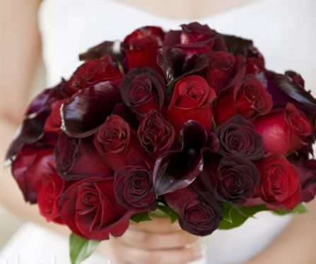 Bridal Bouquet: baccara roses, black magic roses, freedom ...