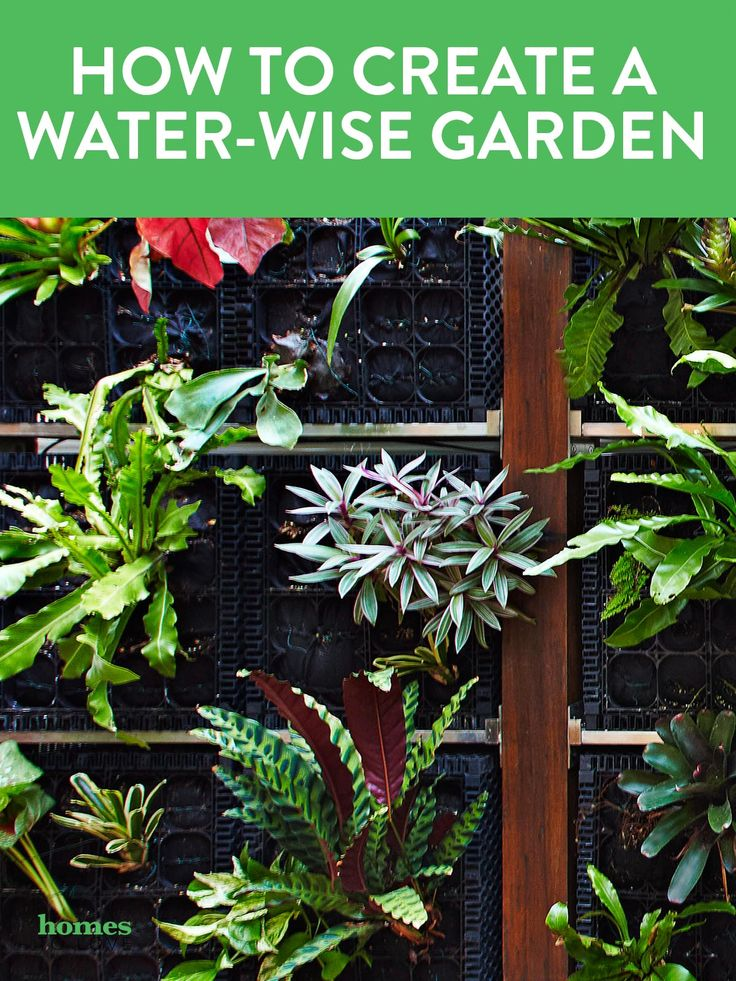 Making your garden more water efficient will mean it will require less watering and maintenance, perform better during dry weather periods, and will be less affected by water restrictions in your area. Photo: Michael Wee | Story: real living