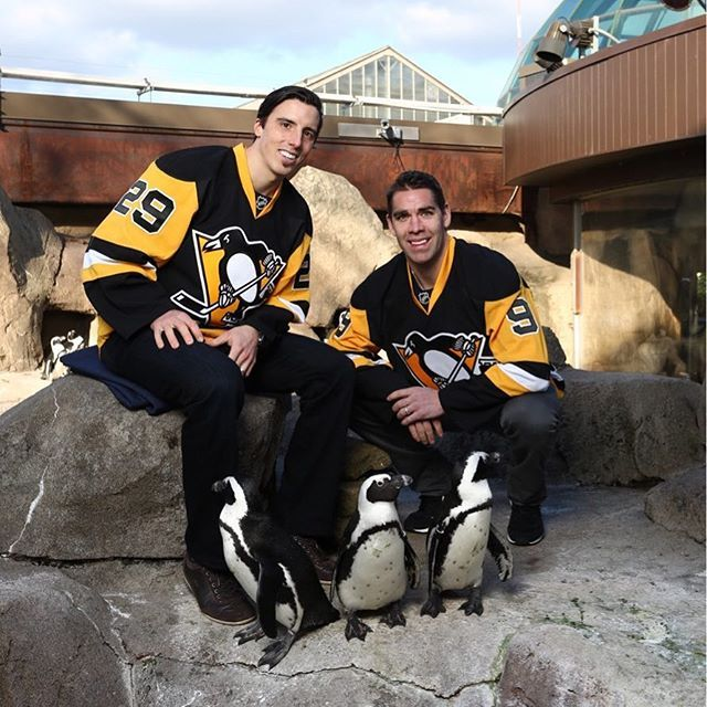 In recognition of Marc-Andre Fleury, the National Aviary is hosting a Fleury Appreciation Day today! Guests can enjoy penguin activities, including a penguin naming ceremony, Iceburgh appearances, a video montage, and a penguin painting demonstration! Plus, there will be chances to win autographed Penguins Gear!