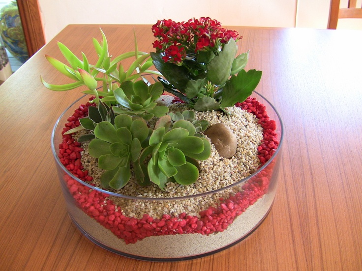 Succulent dish garden accented with red