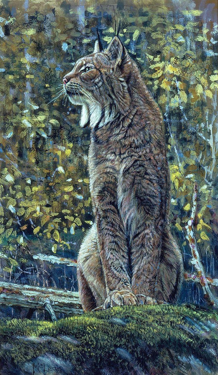 Canada Lynx   George McLean   Artwork   National Museum of Wildlife Art