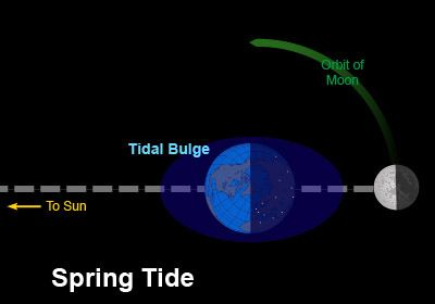 Earth tide measurements provide the speed of gravity which turns out identical to speed of light
