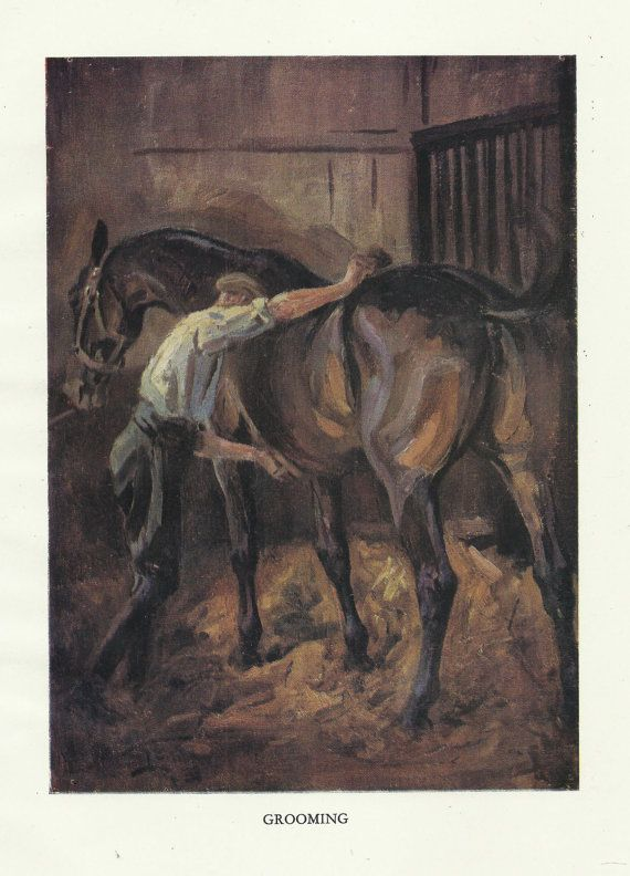 Fox Hunting Horse Stables Grooming Foxhounds by OLDBOOKSMAPSPRINTS