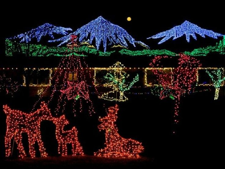 fabulous red deer bellevue botanical gardens christmas lights outside interior design giesendesign holidays pinterest red deer christmas lights and - Deer Christmas Lights