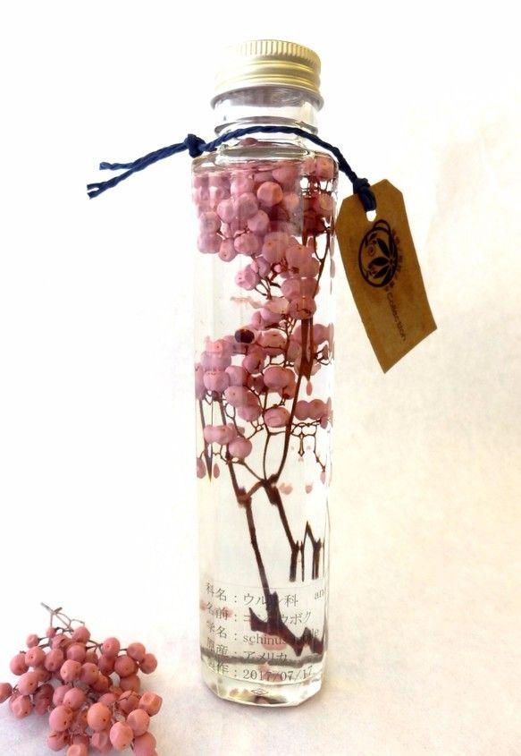 植物ノ瓶詰メ標本collection コショウボク ピンク (ペッパーツリー、ペッパーベリー)|フラワー・リース|花職人工房|ハンドメイド通販・販売のCreema
