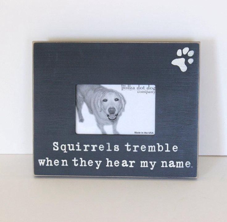 dog picture frame dog breed gift distressed picture frame