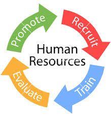 realaussiejobs human